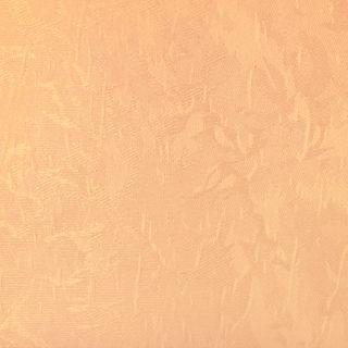 05 Apricot
