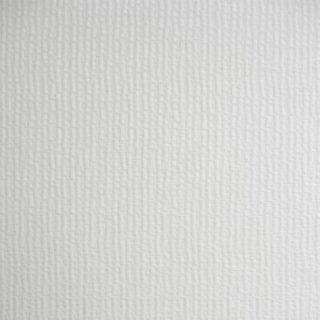 4100 Winter white